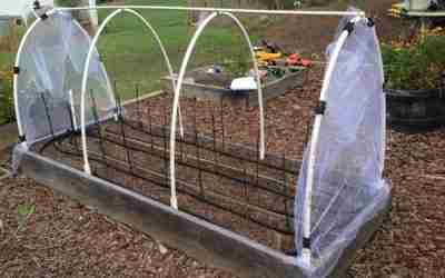 Pest exclusion netting