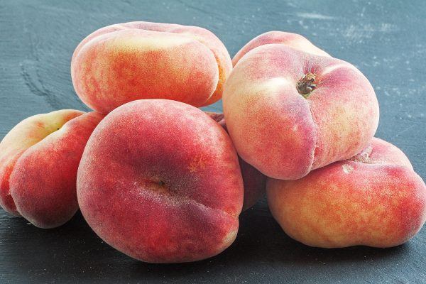 Subtropical Angel Peach fruit tree - PlantNet Australia